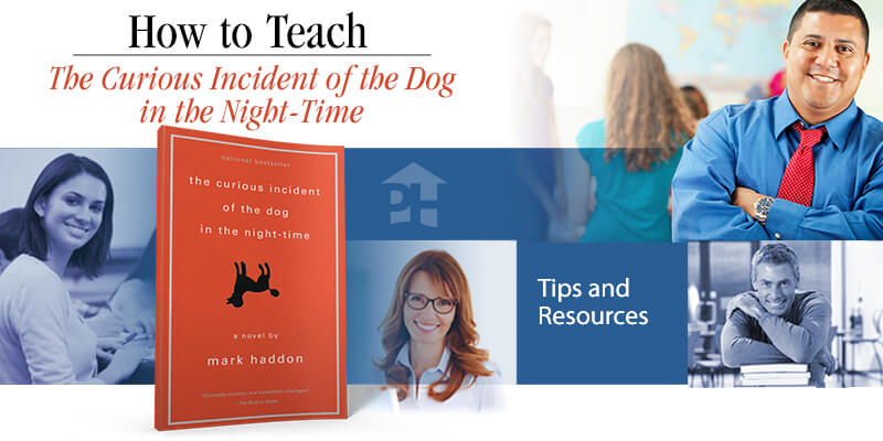 How to Teach The Curious Incident of the Dog in the Night-Time