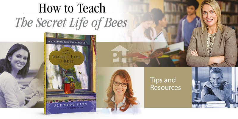 How to Teach The Secret Life of Bees