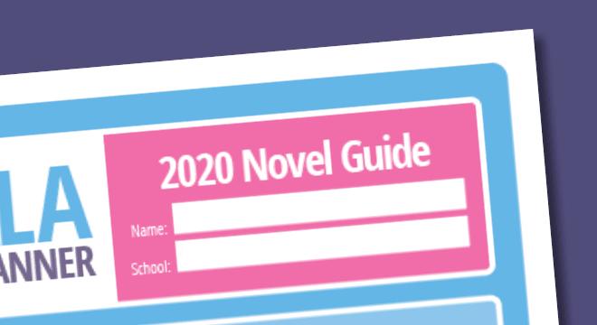 2020 Novel Guide